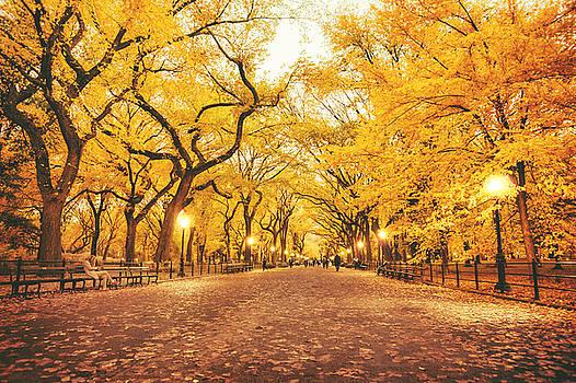 Autumn by Vivienne Gucwa