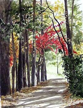 Autumn walk by Carla Dabney