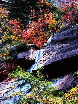 Autumn Waterfall in The Narrows by Alan Socolik