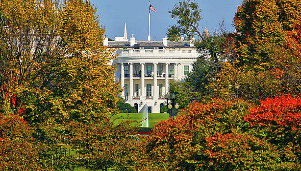 Autumn White House by Mitch Cat