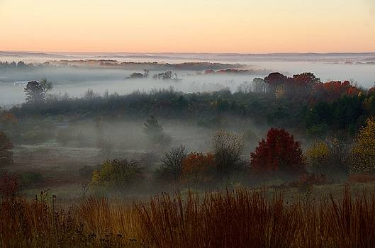 Autumnal Fog by Brian Kristoph