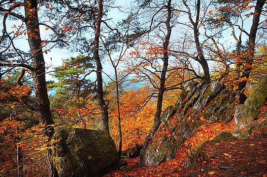 Jenny Rainbow - Autumnal Reminiscence
