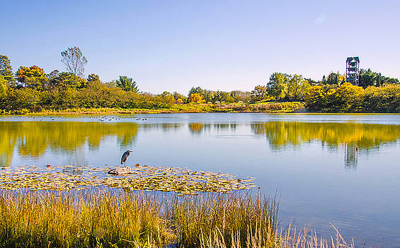 Julie Palencia - Autumns Garden Landscape