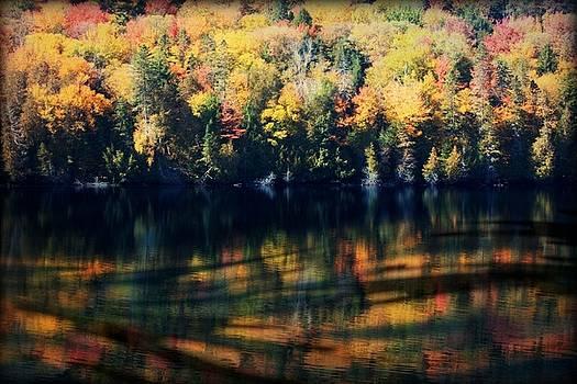 Autumn's Masterpiece by Robin Regan