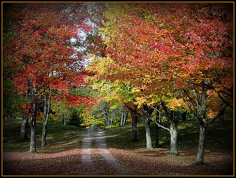 Autumn's Walk by Trina Prenzi