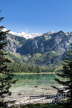 Avalanche Lake Framed with Pine Trees by Brandon Alms