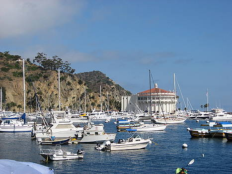 Avalon Bay Morning by Candace Doub