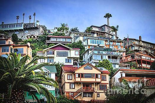 Avalon Hillside with Harbor View by Norma Warden