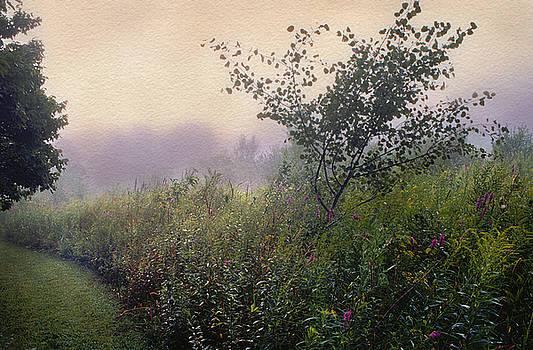 Avalon by Yuri Lev