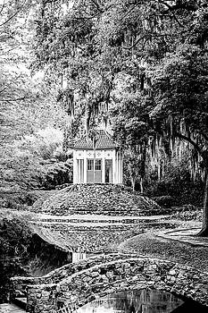 Avery Island Buddha by Scott Pellegrin