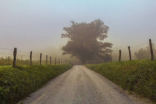 Awaiting the Horizon by Jessica Brawley