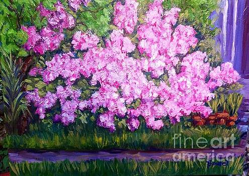 Azalea Spring by Beverly Boulet