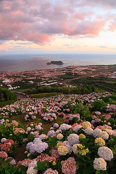 Gaspar Avila - Azorean town at sunset