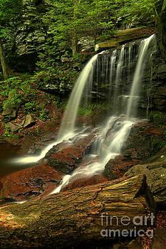 Adam Jewell - B Reynolds Falls