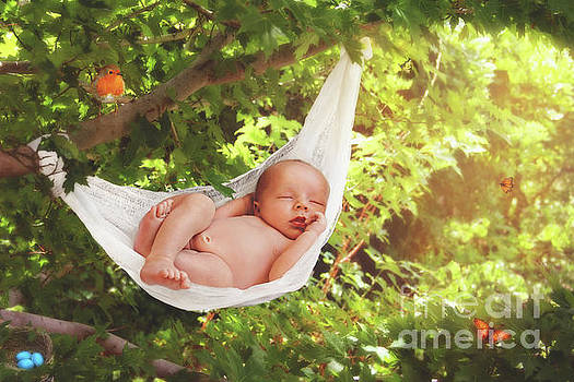 Baby Asleep in the Magical Forest by Fairy Tales Imagery Inc
