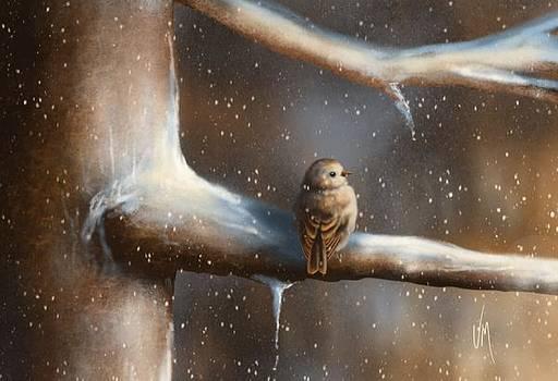 Baby bird  by Veronica Minozzi