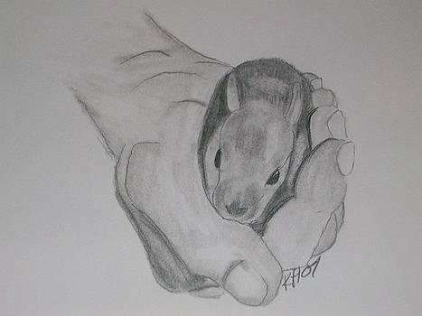 Baby Bunny by Kristen Hurley