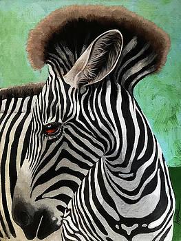 Baby Zebra by Linda Apple