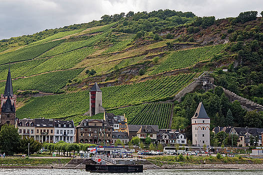 Bacharach Germany by Sally Weigand