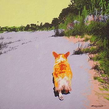 Back Bay Trail v.29 by Max Yamada