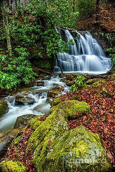Back Fork Waterfall  by Thomas R Fletcher