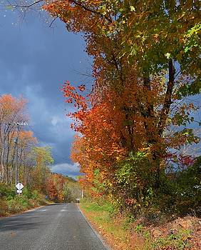 Backroad Country in Pennsylvania by Jeanette Oberholtzer