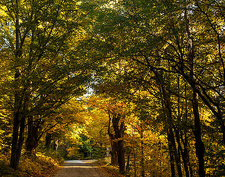 Backroads of New England by Sue OConnor