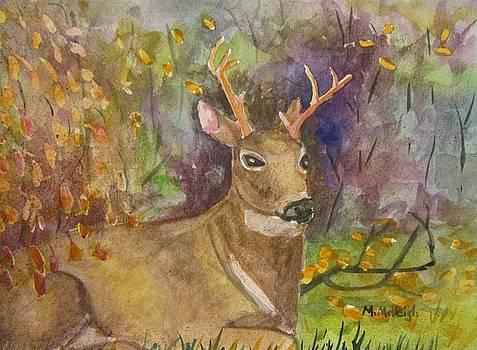Backyard Guest by Marita McVeigh