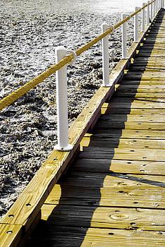 Badwater Boardwalk by Zee Helmick