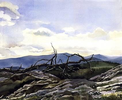 Alfred Ng - Baker Dam Colorado