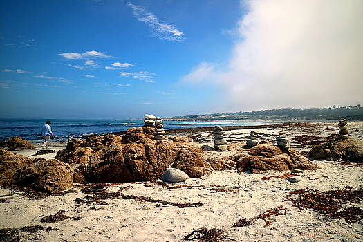 Balanced Beach 2 by Joyce Dickens