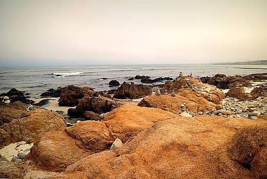 Balanced Beach 3 by Joyce Dickens