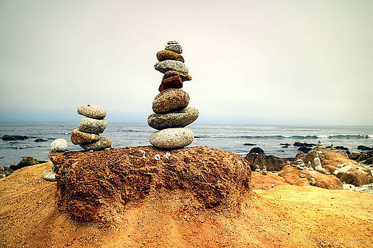 Balanced Beach 4 by Joyce Dickens