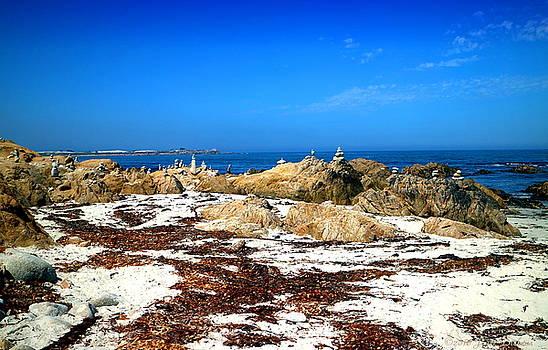 Balanced Beach by Joyce Dickens