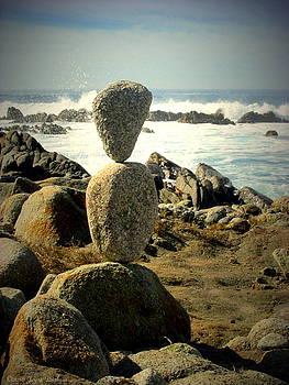 Joyce Dickens - Balancing Nature