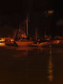 Balboa Island Newport Bay Night by Angela A Stanton