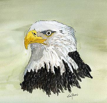 Bald Eagle by Eva Ason