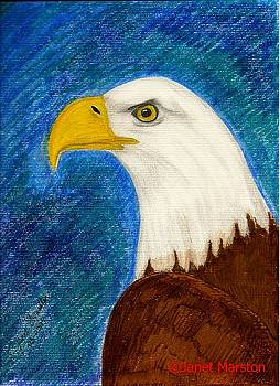 Bald Eagle Painting by Janet Marston
