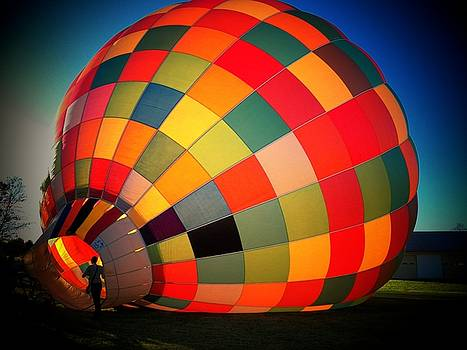 Balloon by Joyce Kimble Smith