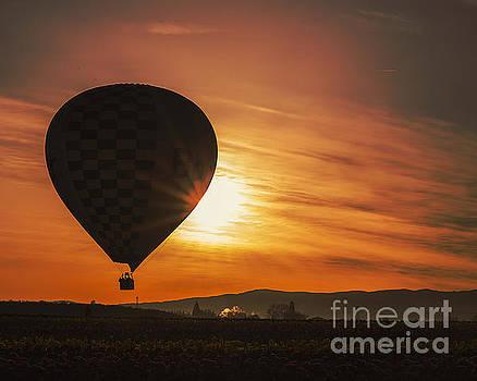 Balloon Ride by Billie-Jo Miller