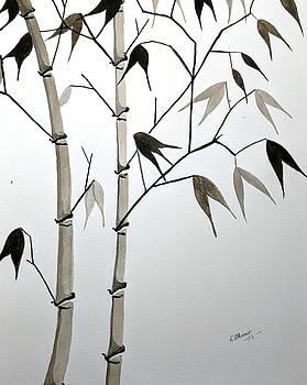 Bamboo by Edwin Alverio