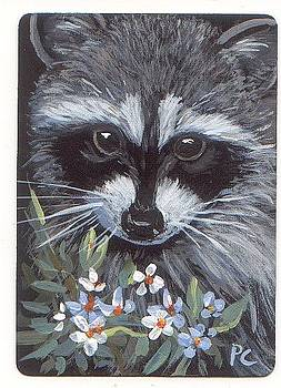 Bandit the Raccoon by Peggy Conyers