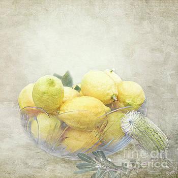 Banksia and Lemons by Linda Lees