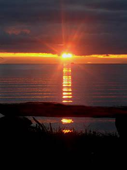 Baptism Sunrise by Barbara Stirrup