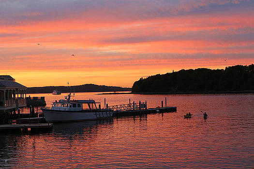 Bar Harbor Cruise by David Yunker