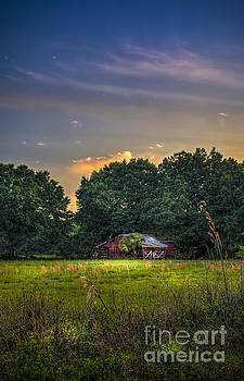 Barn and Palmetto by Marvin Spates