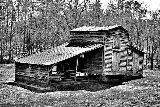Barn at Heritage Village by Tara Potts
