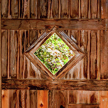 Barn Door by Jerry Cahill