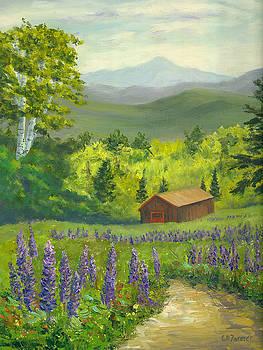 Barn in Lupine Field by Elaine Farmer