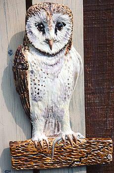 Barn Owl Sculpture by Dy Witt